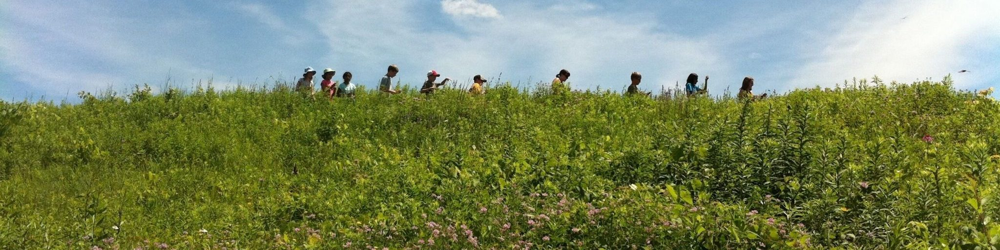 Kids in the distance walking through a prairie