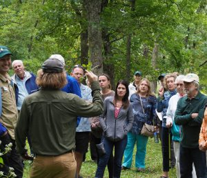 Land Trust Staff addressing buckthorn control with tour group