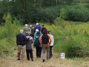 group walking near Old Mill Stream
