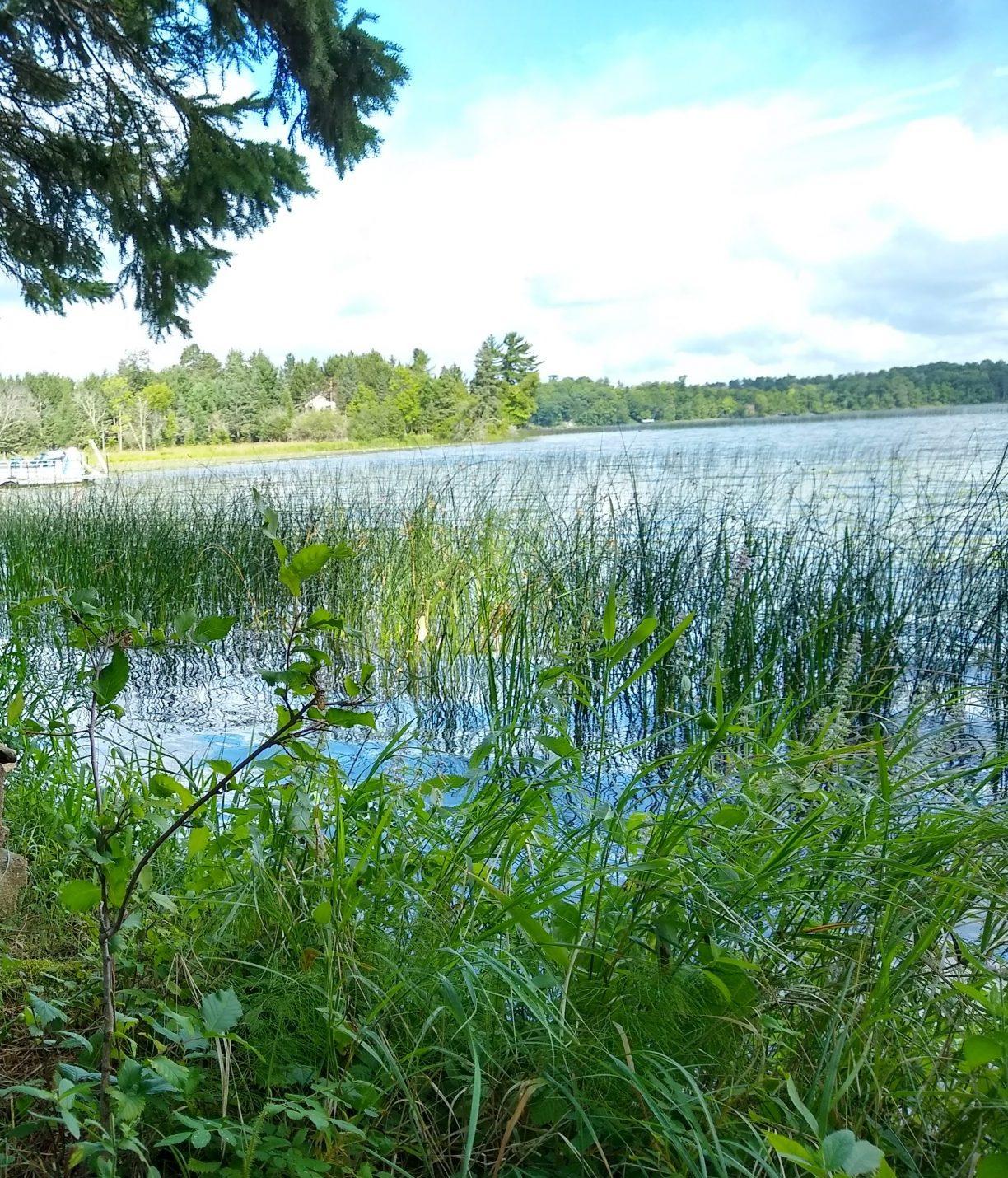 Wabedo Lake